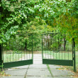 Iron gate in a beautiful green garden — Stock Photo