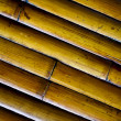 Bamboo Patterns — Stock Photo