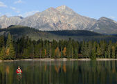 Fly Fishing In Rocky Mountains, Alberta, Canada — 图库照片