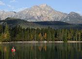 Muškaření v rocky mountains, alberta, kanada — Stock fotografie