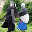 Medieval warriors — Stock Photo #8214261