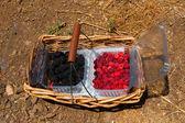 Framboesas e blackberry — Foto Stock