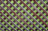 деревянный забор — Стоковое фото