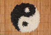 Yin and yang — Stock Photo