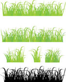 Grass 4 different types — Stock Vector