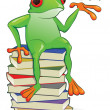 Book Frog — Stock Vector