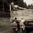 Men catch a ride uphill in Kenya — Stock Photo