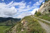 Road to mountains — Stock Photo