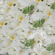 Stock Photo: White wedding flowers