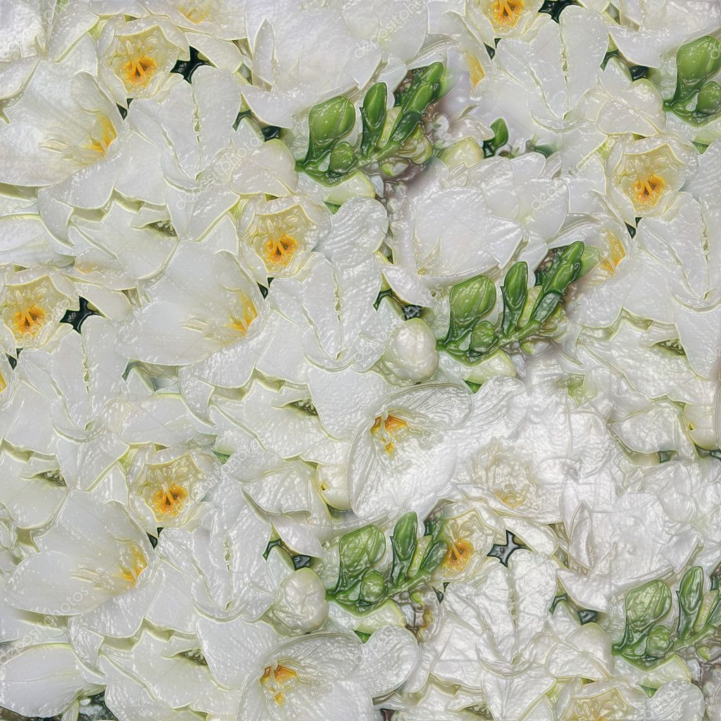 White wedding flowers  — Stock Photo #8864113