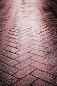 Wet tile stone way — Stock Photo