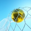 Ball in net — Stock Photo #8798166