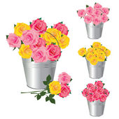 A bucket of roses — Stock Vector