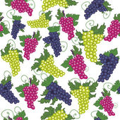 Seamless pattern of grapes — Stock Vector