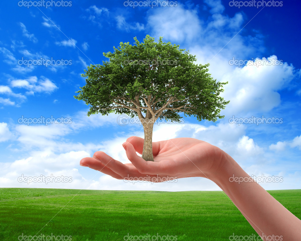 importance of keeping the environment clean focus high importance of keeping our environment clean essay