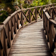 Brown Wood Bridge — Stock Photo #9153899