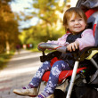 Baby in sitting stroller on nature — Stok fotoğraf
