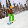 Snowboarder riding on snow-covered forest — Stock Photo