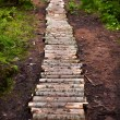 Winding forest wooden path walkway through wetlands - Stock Photo