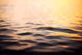 Picture of the surface water in the sunset time — Stock Photo