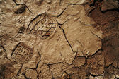 Footprint on the cracked earth — Stock Photo