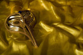 Elegant carnival mask — Stock Photo