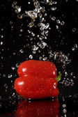 Red pepper with water splashes — Stock Photo