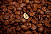 Fried coffee beans — Stock Photo