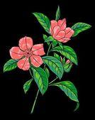 Pink flowering branch — Stock Vector