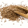 Flax seeds — Stock Photo