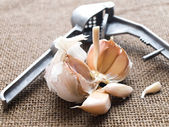 Garlic cloves — Stock Photo