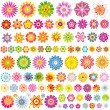 Set from 91 flowers — Stock Vector