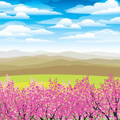 Pink japanese trees and mountains — Stock Vector