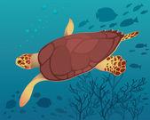 Schildpad en vis — Stockvector