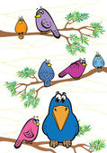 Funny colored birds — Stock Vector