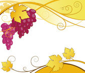 Grape vines abstract — Stock Vector