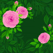 Stock Vector: Background of roses