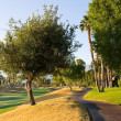 Royalty-Free Stock Photo: Golf Cart Path In Southern California