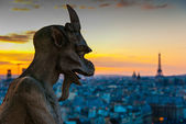 Gargoyle Staring over Paris — Stock Photo
