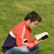 Royalty-Free Stock Photo: Reading in the park