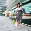 Woman shopping at the mall — Stock Photo #8438183