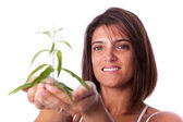 Woman holding a green plant — Stock Photo
