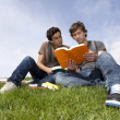 Studing in outdoor — Stock Photo #8638113
