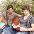 Studing at the school — Stockfoto