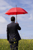 The insurance agent — Stock Photo