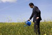 Businessman with a flowerpot — Stock Photo