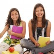 Two young student sisters — Stock Photo #8659085