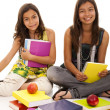 Two young student sisters — Stock Photo #8659091