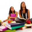 Foto de Stock  : Two young student sisters