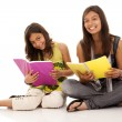 Stock Photo: Two young student sisters